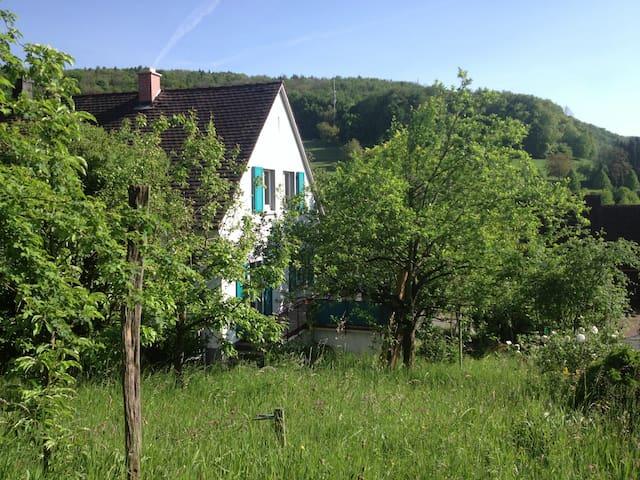 Gemütliches Zuhause mit Baselblick - Inzlingen - Talo