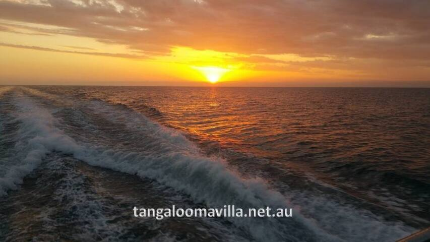 TangaloomaResort Absolute Beachfront 2 level Villa - Moreton Island - Villa