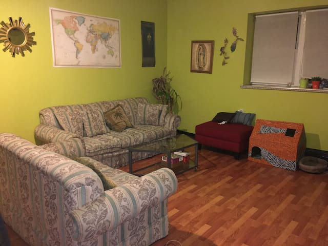 Spacious room and apartment in South Philly