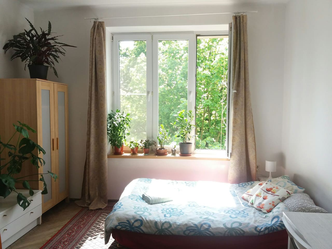 Room overlooking green spaces with many plants inside
