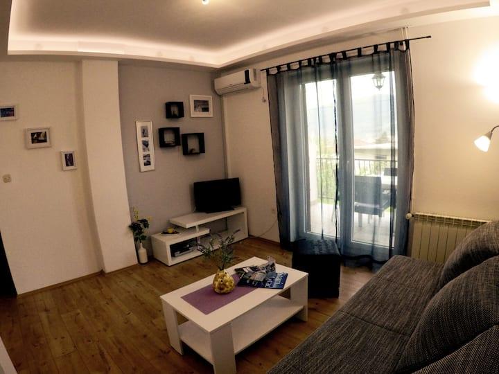 Comfortable apartment in Stari Grad