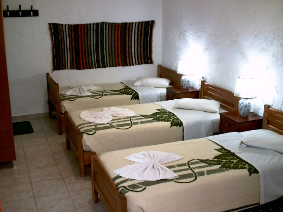 Triple room with private facilities