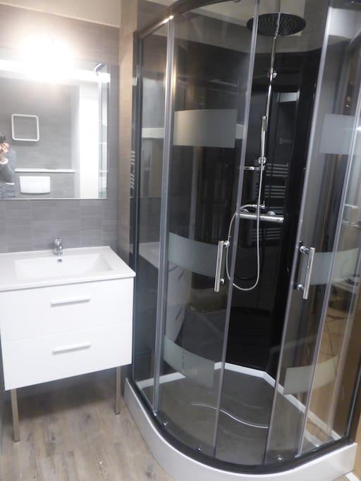 Salle de bain tout confort et entièrement refaite.