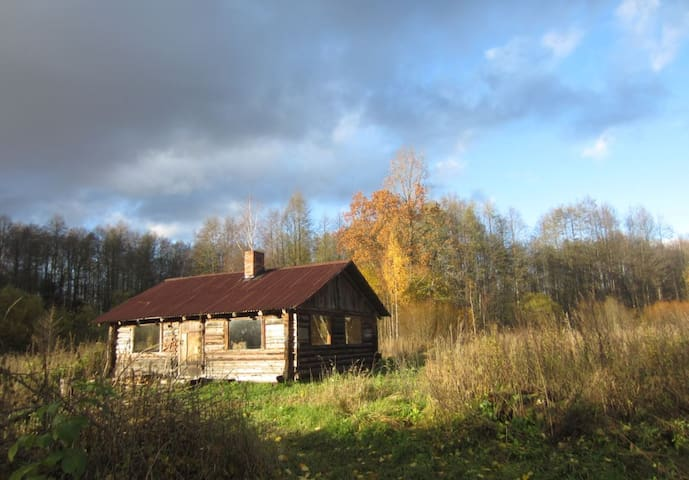 The Bog Cottage of Rehesaare