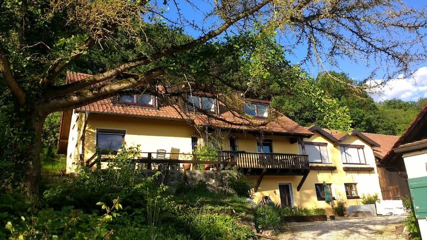 Wohnen nahe Donau und Walhalla bei Donaustauf