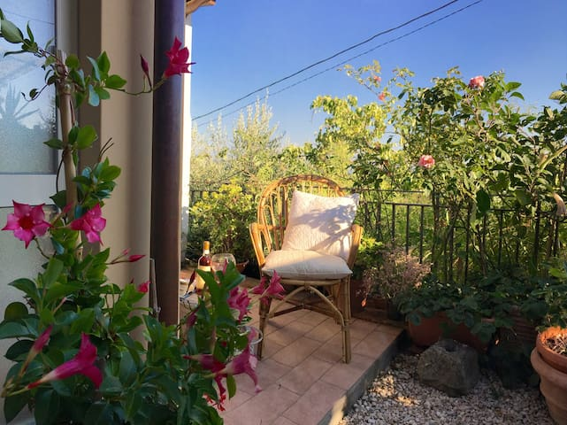 Cozy country house in Tuscany - Aquilea - Apartemen