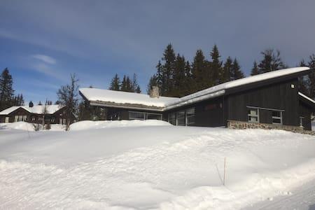 Moderne hytte med flott utsikt. - Nord-Aurdal