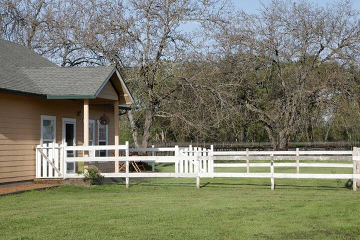 Your private yard, fenced so you can let your pet enjoy the air