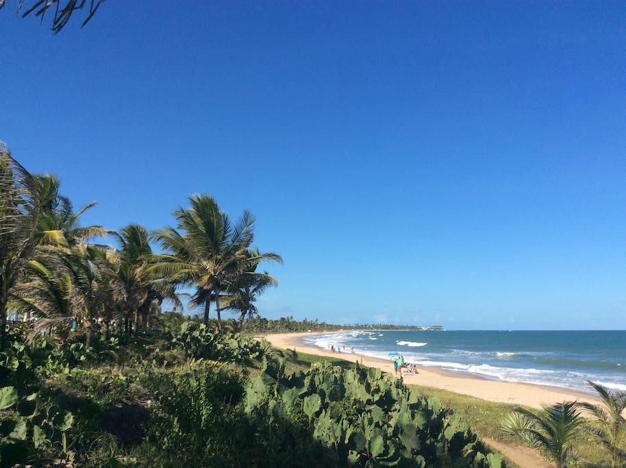 Praia maravilhosa, limpa e cercada por vegetação nativa. 100 metros de distância do condomínio.
