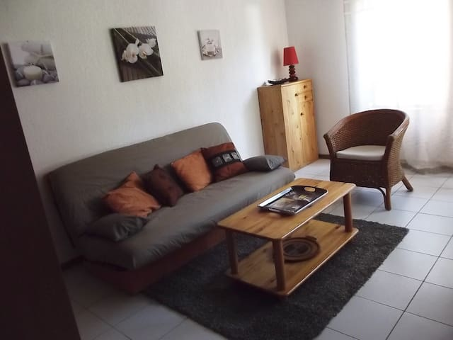 Appartement cosy entièrement rénové - Esquièze-Sère - Apartment