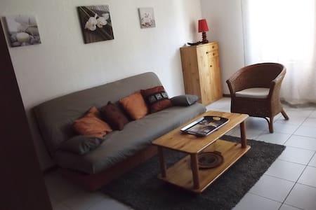 Appartement cosy entièrement rénové - Esquièze-Sère