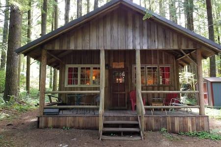 Judy's Vintage Mt. Hood Cabin. Dog OK.