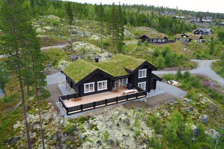 Hemsedal Golf Alpin, log building, 2017, 8-10 pax