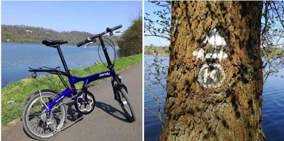 Fahrradtour an der Ruhr geplant- Zimmer frei