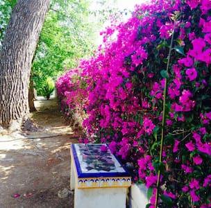 Encantadora Villa Mediterránea con piscina privada - Ondara - House
