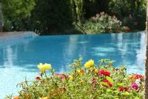 Ambiance couleur en bord de piscine