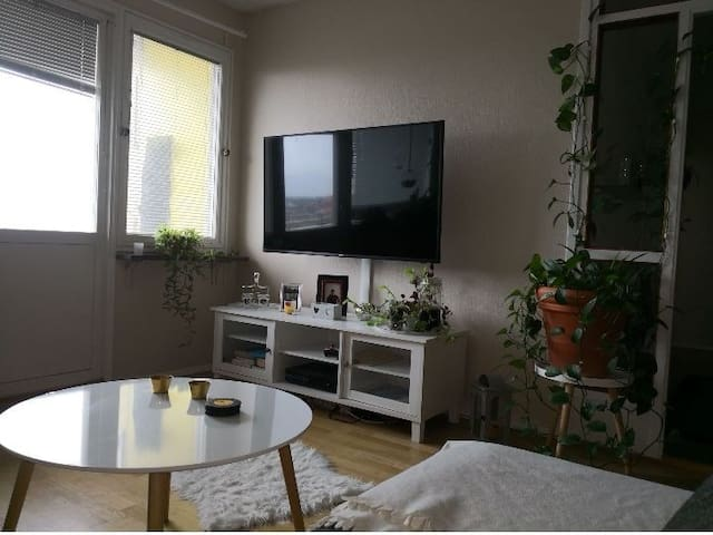 Apartment close to the beach & Malmö city