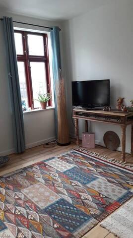 Apartment Central Copenhagen -