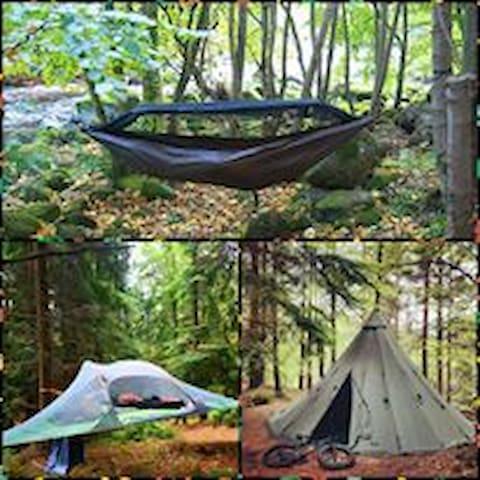 Wicklow Wilderness Adventure - Hammock camp for 1