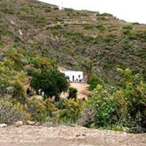 Finca los Belenes - Arico Viejo - House