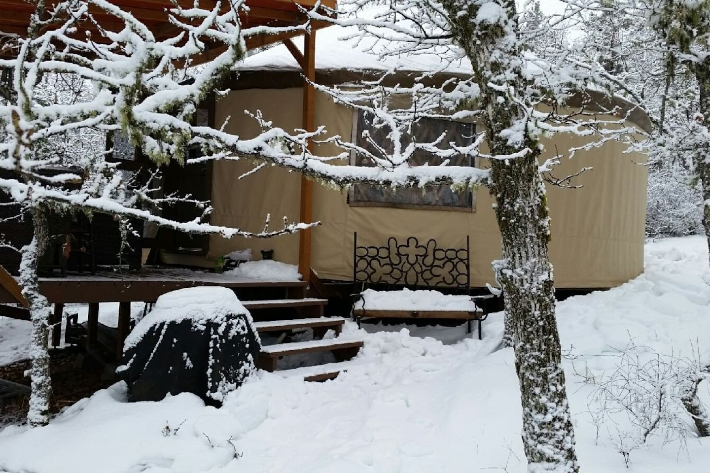 Elevation is only 2,000 ft., but we love the occasional snow. If it's winter, Buck Lane is always cleared for guests.