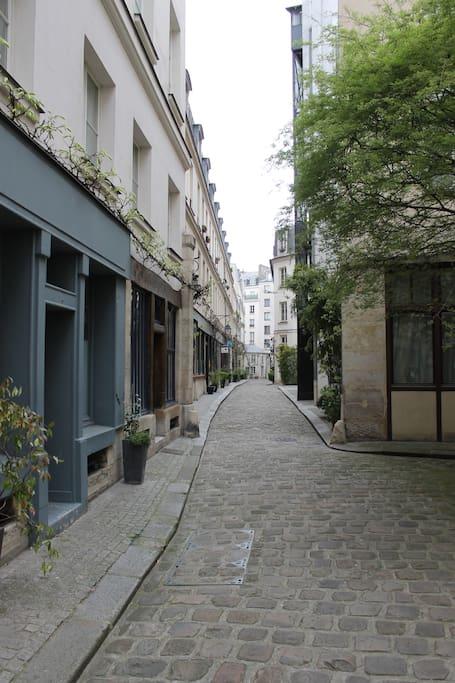 Cours privative arborée en plein coeur de Paris