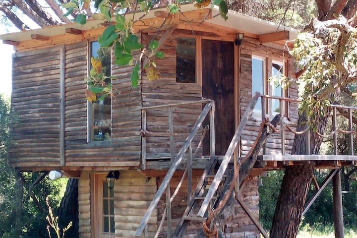Elf Tree House in the South!