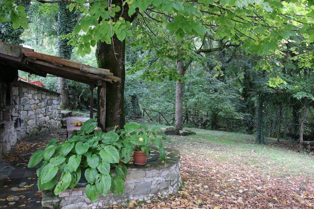 La zona barbecue con giardino