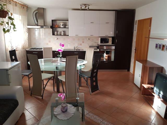 Apartman Kosic 8 + 2