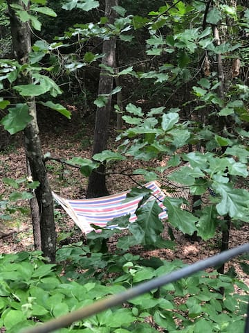 Here's a view of one of the hammocks from the balcony of the Choctaw.