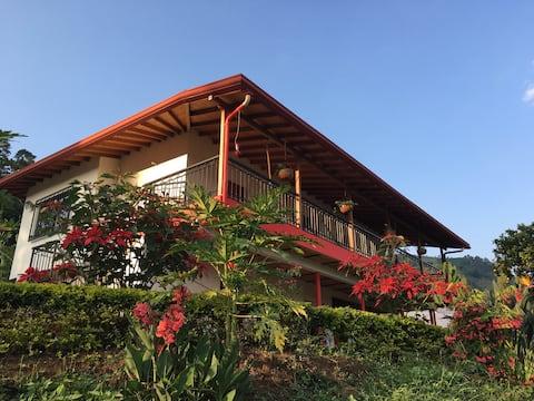 Café del Jardín - p1