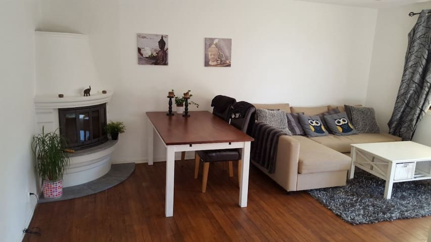 Longterm rental 12-14000kr/month, Near city center