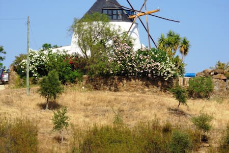 Traditional Windmill with Pool, Rural Setting