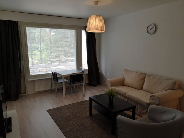 One-bedroom apartment with really good condition
