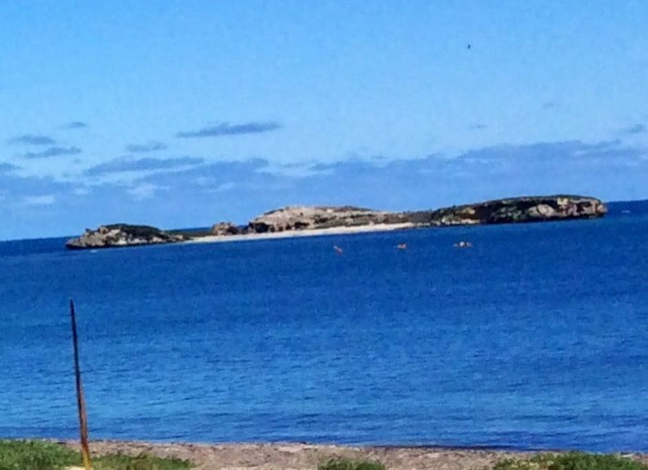 Looking across the marine park to Seal Island