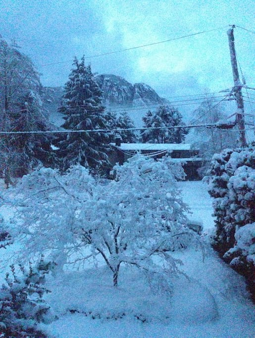 Your view from the living room window after a snowy night.