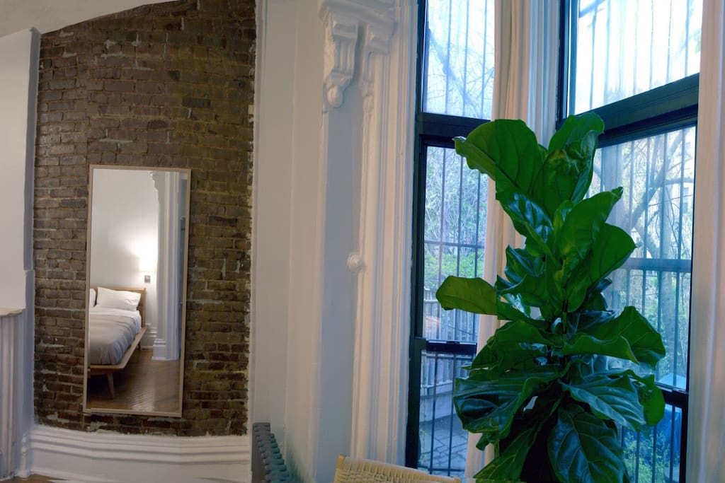Have a seat under the fiddle leaf fig and unwind with a book or scheme your evening's adventure.