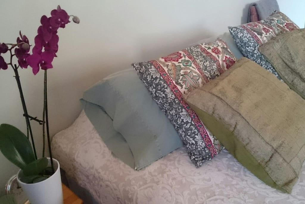 Cozy bed (2 single beds together or separate)