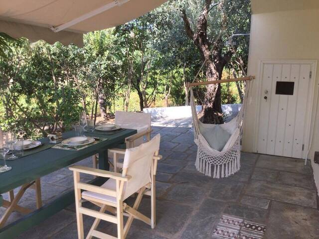 Quality retreat among olive groves close to beach - Skopelos - 獨棟