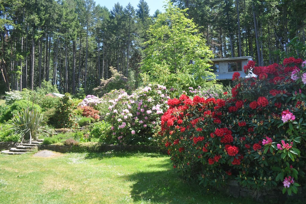 The studio is nestled between the forest and extensive gardens and lawns