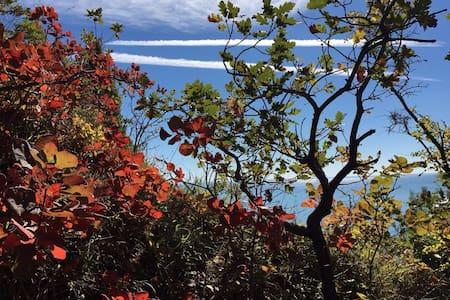 Вилла на море в сосновом лесу - Джубга