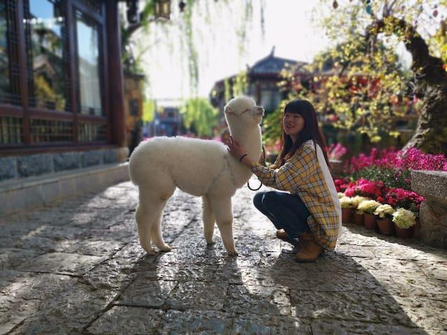 萌宠羊驼•纳西风格-指导旅游攻略-有空调电热毯-免费洗衣品茗-店长是美食达人-精致舒适标间