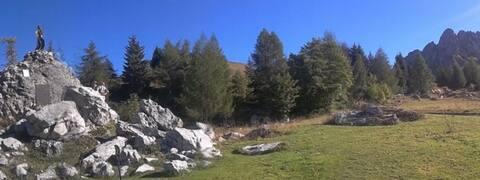 Casa Alpi Schilpario, loft Edelweiss