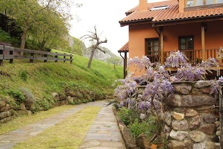 Apartamento Rural Buenamadre - Pola de Somiedo - Дом
