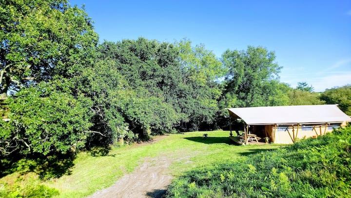 'Tanglewood' Safari Tent the perfect rural retreat