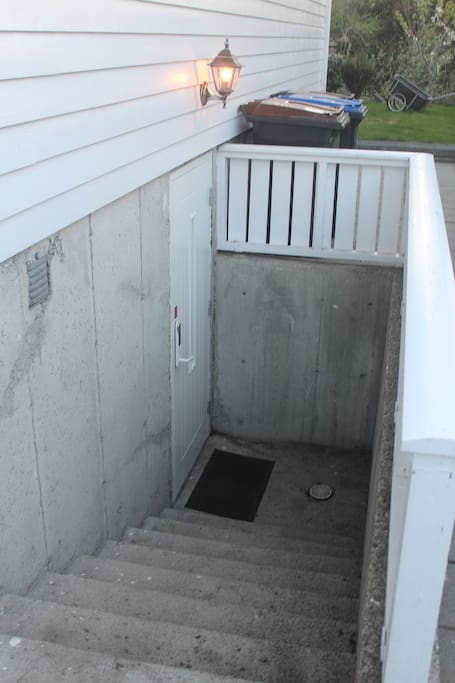 The entrance door to the basement on the right side of the house.