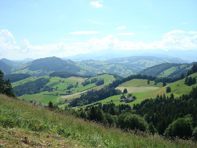 Durch die Hügel wandern