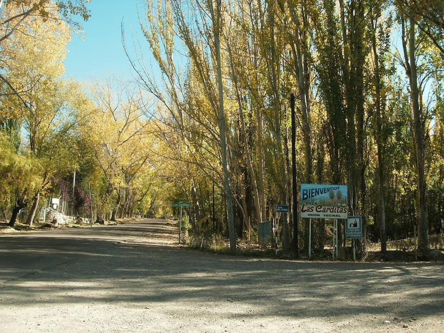 Avenida Los Cóndores