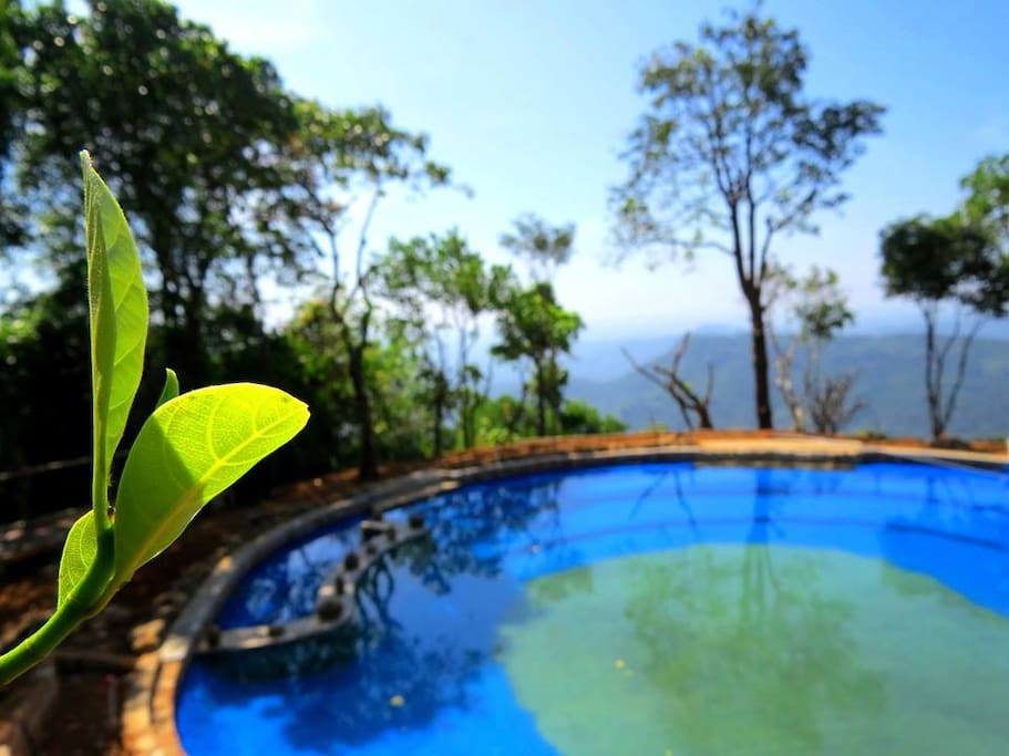 Natural Spring WaterPool
