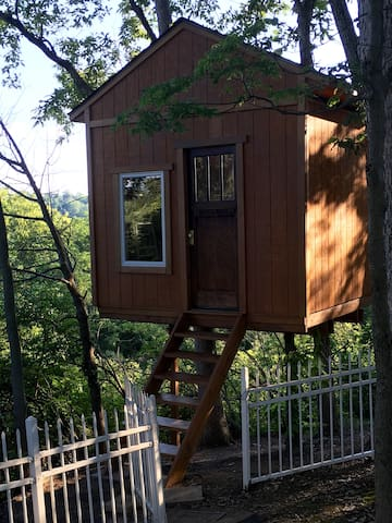 My Old Kentucky Treehome